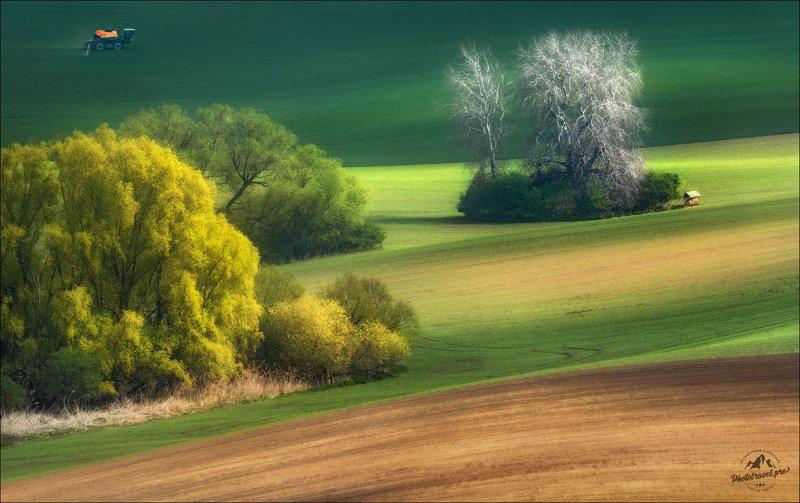 чехия, южная моравия, фототур в южную моравию, south moravia, czech, phototravel.pro По ту сторону весны .. фото превью