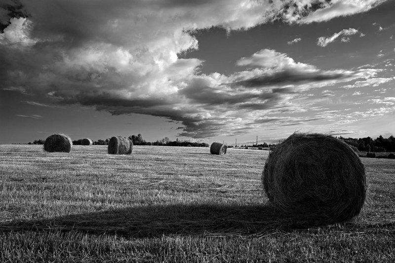 подмосковье, поле, облака, сено Июльphoto preview