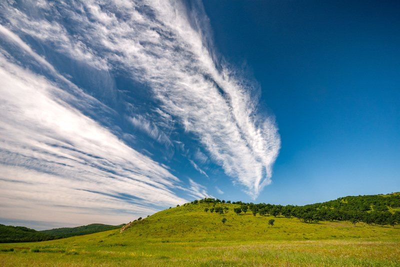 nature, landscape, outdoors, sky, blue, cloud - sky, grass, rural scene, scenics, meadow, summer, tree, hill, mountain, green color, forest, beauty in nature, cloudscape, weather, environment Windows 95photo preview