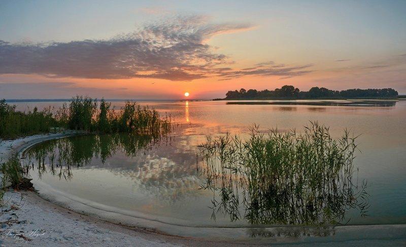 лето, каховка, утро, рассвет, восход, Просто летнее утроphoto preview