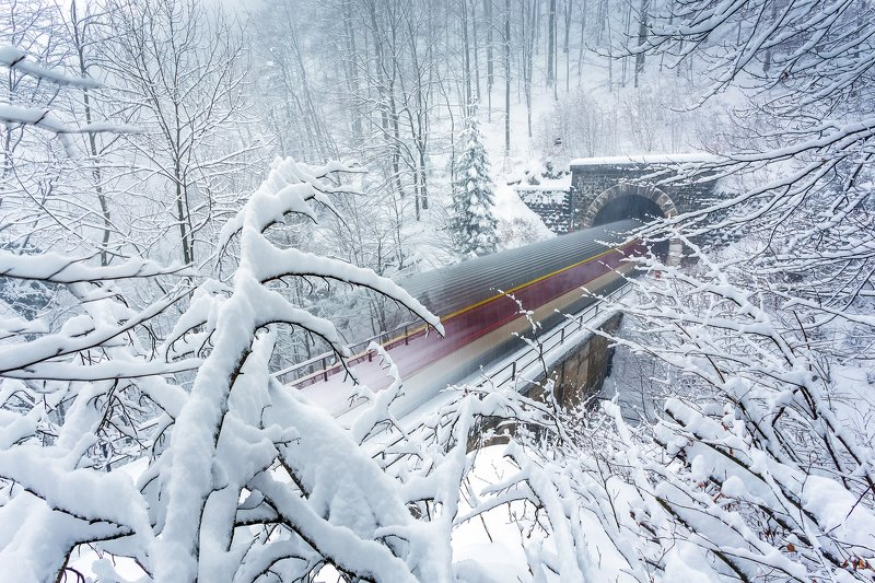 train, snow, winter, long exposure, motion, trees,white, tunel, Snow trainphoto preview