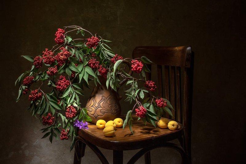 натюрморт, бузина, абрикосы Бузина...photo preview