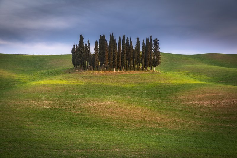 Guardians of Tuscany фото превью