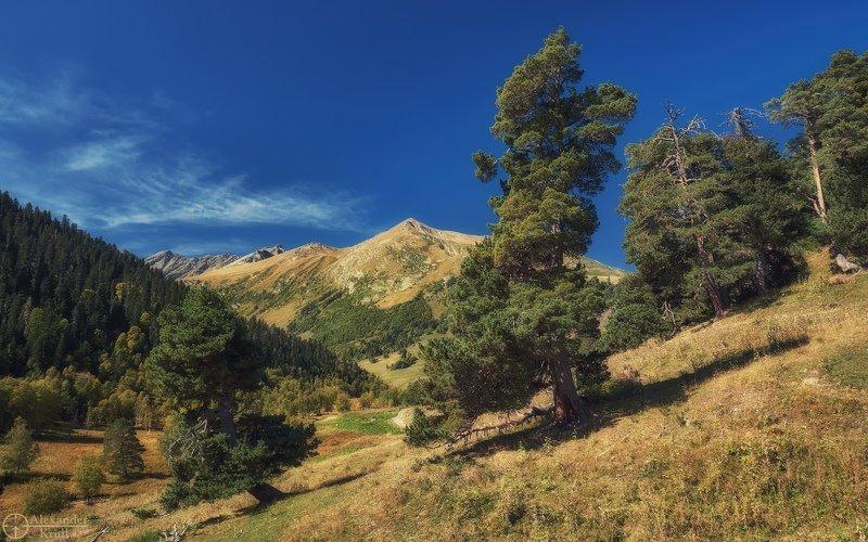 Выше гор...photo preview