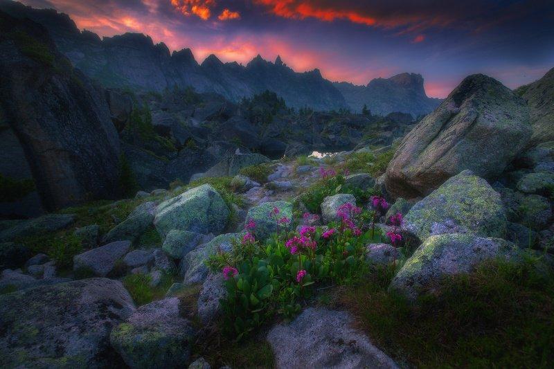 ергаки, горы, саяны, западныйсаян, сибирь Утро в долине Гармонии фото превью