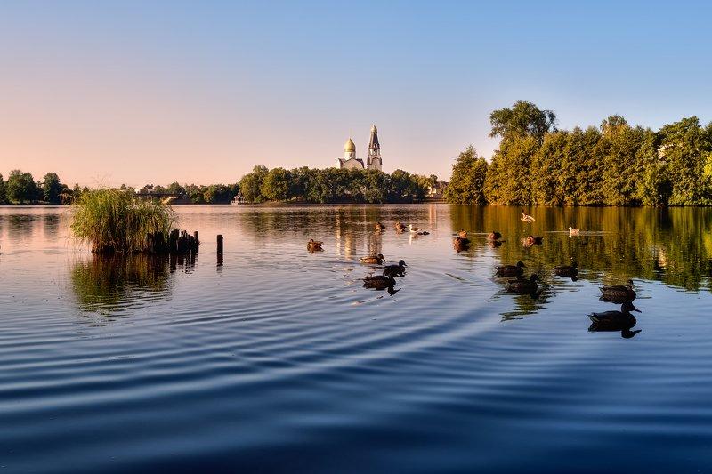 утро,озеро,утки,храм Сестрорецкое утроphoto preview
