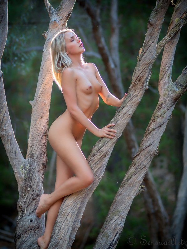 female, nude, woman, outdoor Sylph at sunsetphoto preview