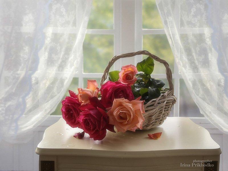 натюрморт, цветочный натюрморт, художественное фото, корзина, летние розы С корзиной садовых розphoto preview