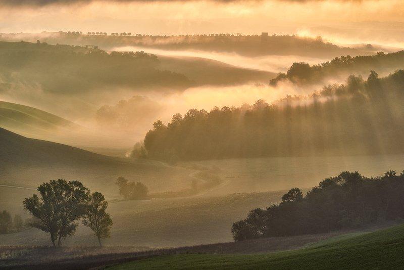 Pievina, Siena Province, Tuscany, Italy, Europe Tuscany fieldsphoto preview