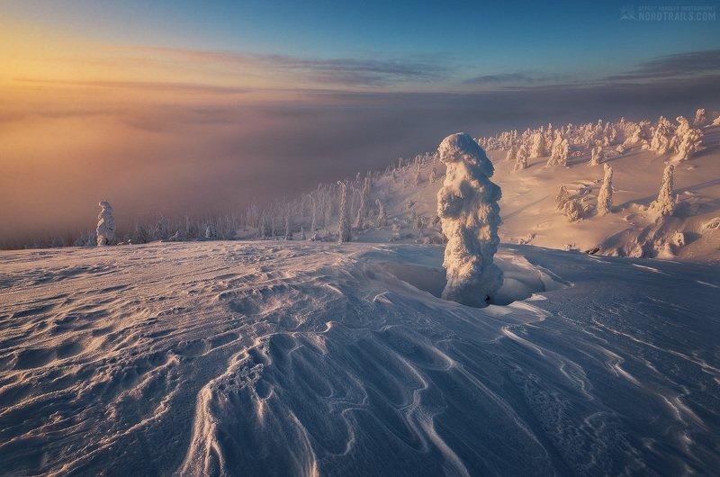 кольский, кольский полуостров, кандалакша, зима, winter, snow, north Однажды морозным вечеромphoto preview