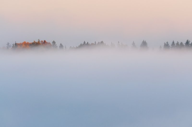 псков Там за туманами....photo preview