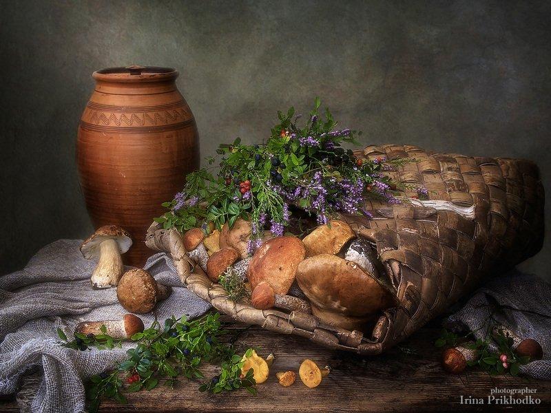 натюрморт, винтажный, деревенский, грибы, лесные ягоды, ретро Дары августаphoto preview