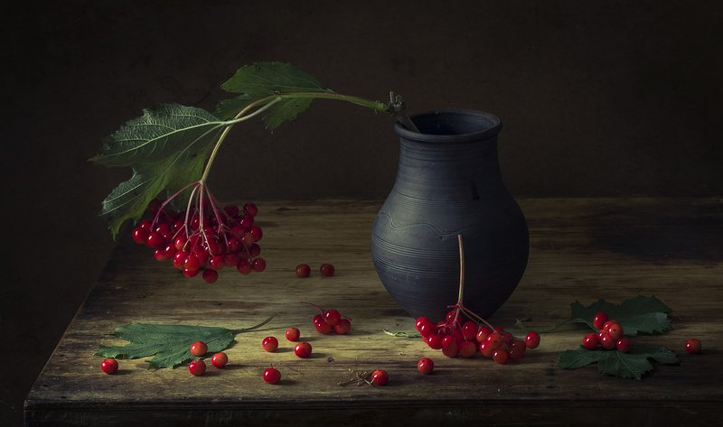 натюрморт,калина,ягоды Калинаphoto preview
