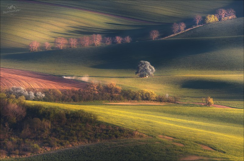 zigzag, зигзаг, чехия, южная моравия, весна, фототур в южную моравию, czech, south moravia ZIGZAG фото превью