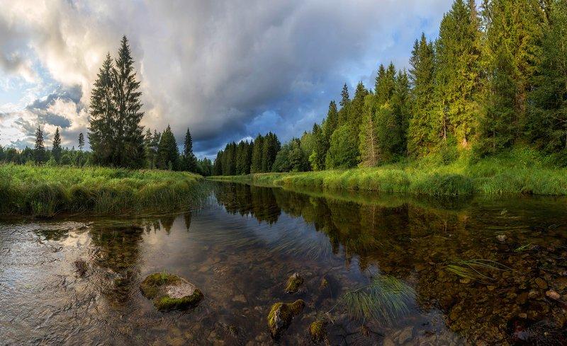 река, лето ,вечер, туча, ленинграская обалсть, рыбалка, небо, ель Гроза в речной долине. Август 2019photo preview