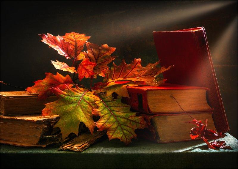 still life, натюрморт,    винтаж,   листья, осень, осенние листья, осенние краски, книги, осенний натюрмортphoto preview