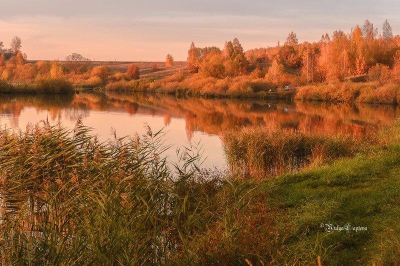 пейзаж,природа,россия,осень,октябрь,красота \