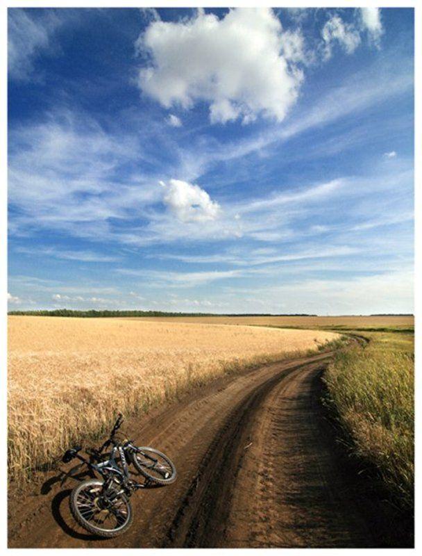 небо,природа,пейзаж,велосипед,поле,пшеница,дорога,трава,лето Только небо и свобода...photo preview