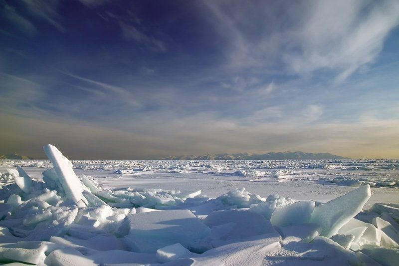 батарейная Поющие льдыphoto preview