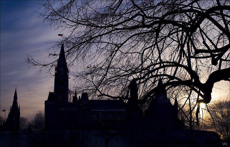 замок Вечер... Ветви...photo preview