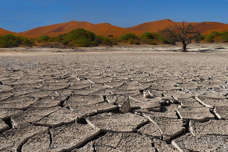 намиб,намибия,пустыня Crying for rainphoto preview