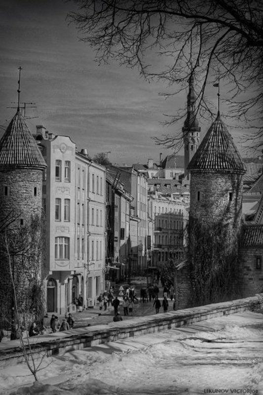 таллинн, город, чб, arhy Tallinnphoto preview