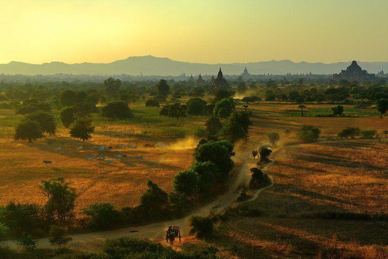бирма баган Sun walleyphoto preview
