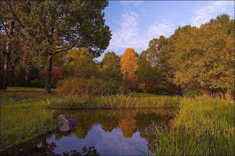 природа, весна, очень, сад, листья, деревья, зелень photo preview
