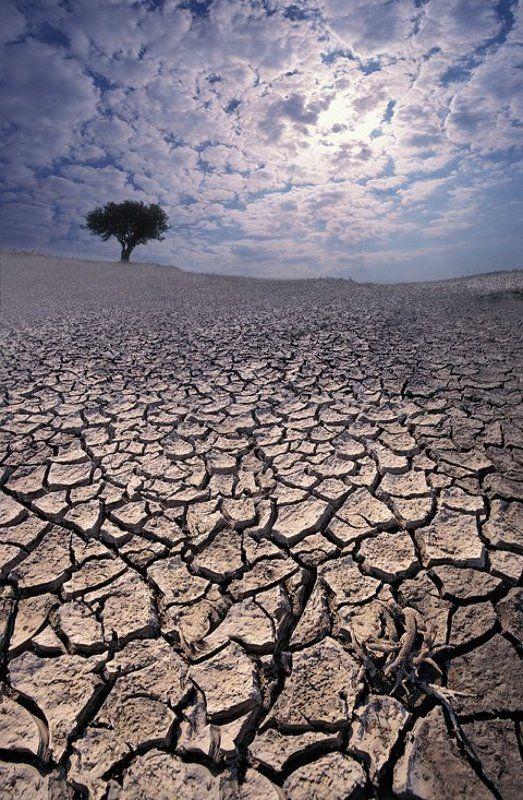глобальное потеплениеphoto preview