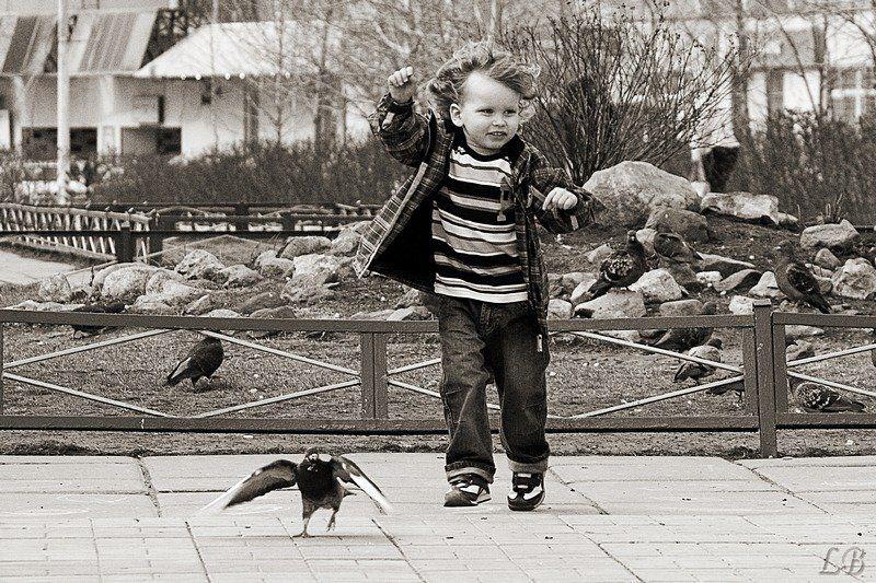 весна, малыш, голубь, бульвар, людмила, багдасарян, (lb) Весна в городеphoto preview