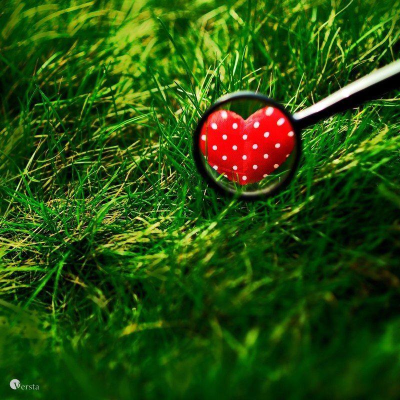 сердечко, серце, любовь, лупа, красний, червоний, трава, зелень любовь по всюду...photo preview