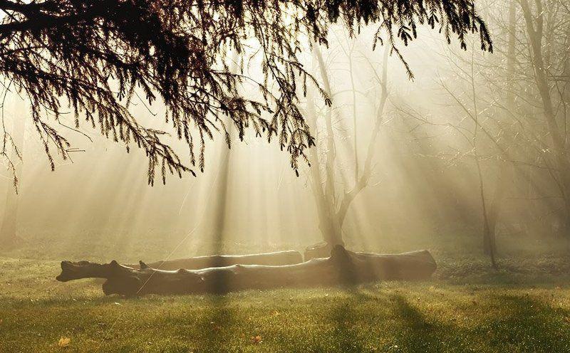 небесное просвещенияphoto preview
