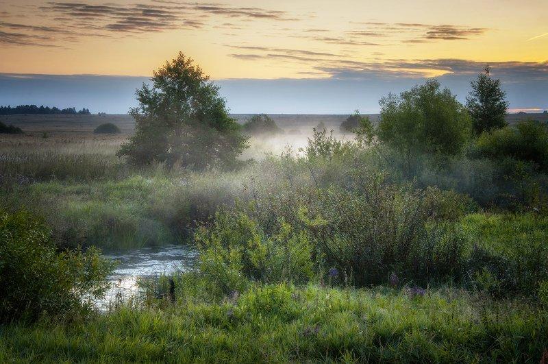 туман,рассвет,лето,природа,пейзаж «Над рекой рассвет встает»photo preview