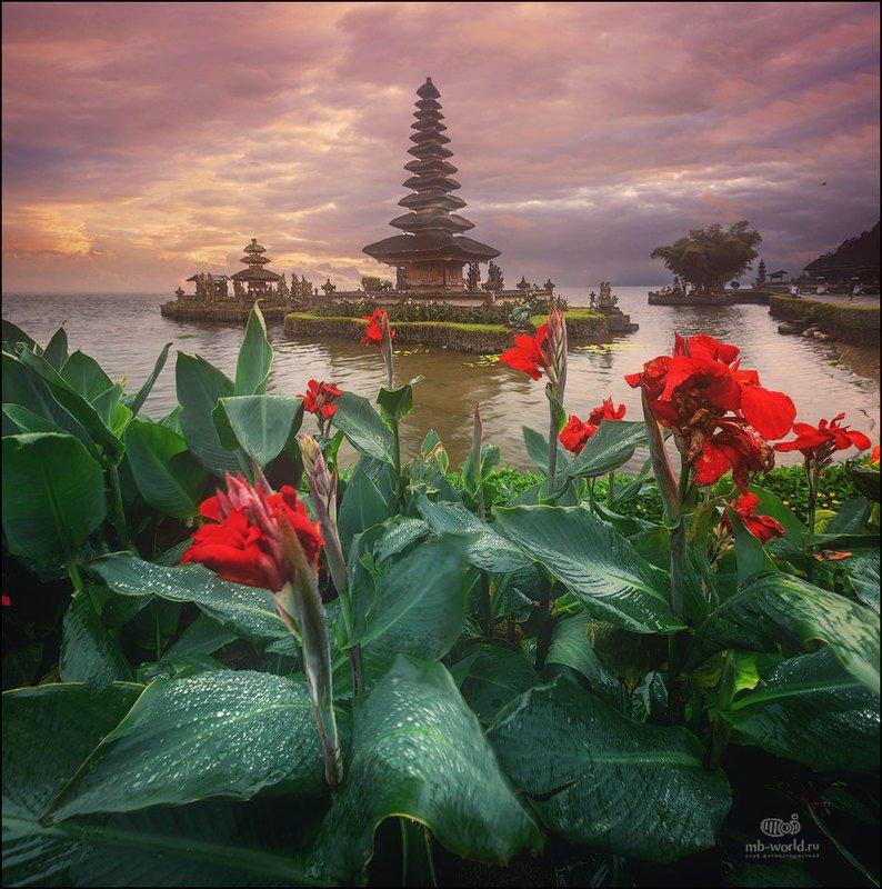 Индонезия, Бали, закат, пейзаж Храм Пура Улун Дану - одна из главных достопримечательностей острова Бали photo preview