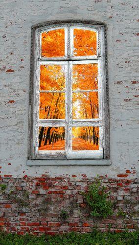 Скоро осень...