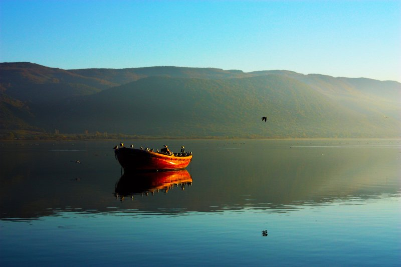 landscape,view,image,art,lake,birds,reflection,peace,travel,freedom,photography, LONELINESSphoto preview