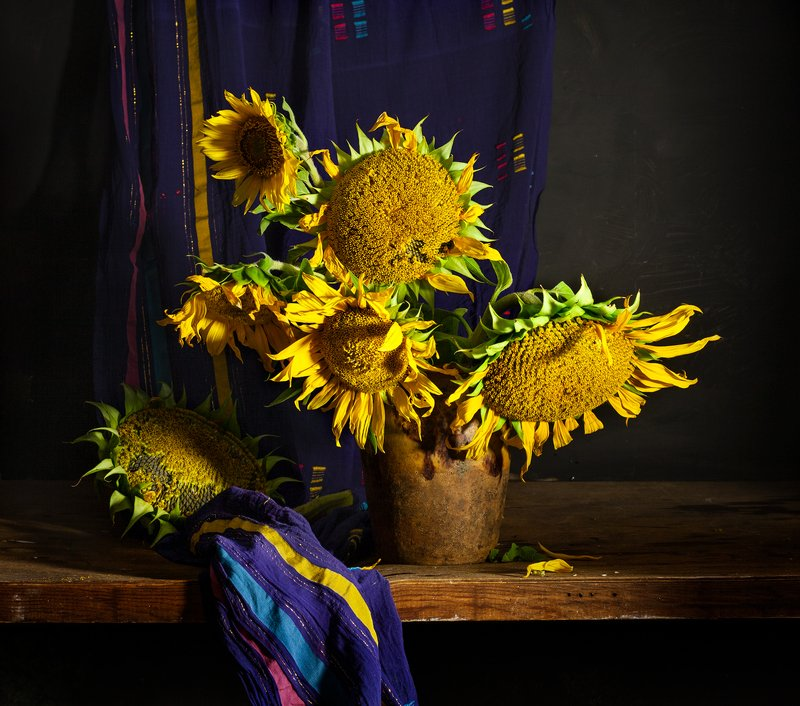 натюрморт, цветы, подсолнухи. still life, sun flowers Подсолнухи 2photo preview