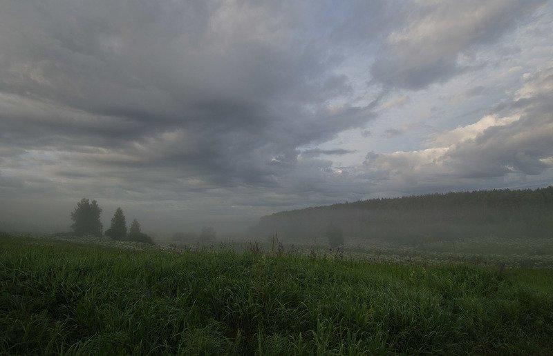 утро, июль, лето, природа, пейзаж, архангельское Июльский громphoto preview