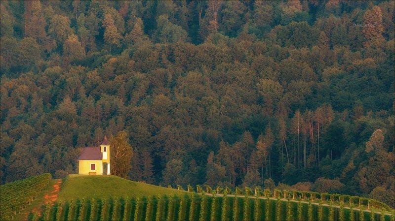 dreisiebner kapelle,свет,часовня,штирия,chapel,гамлитц,австрия,gamlitz- sernau,landscape,панорама,лето Dreisiebner kapelle фото превью