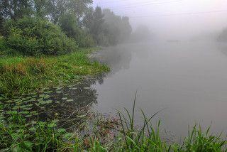Утро городской реки Бердь.(3020)