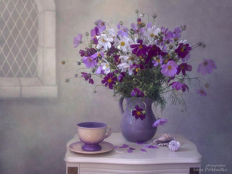 натюрморт, цветочный, винтажный, ретро, космея, букет, Неприметная красотаphoto preview