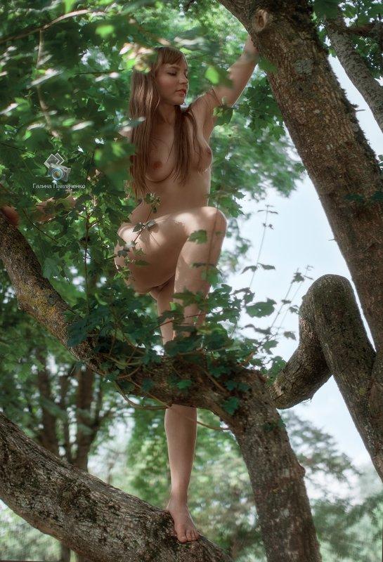 art nu,  photo, photography, eroticism, sexual, artistic erotica, girl, naked body, nude, nu, топлес, фотохудожники, художественная фотография, ретушь, эротика, ню, обнажённое тело, сексуальность, фотосессии в краснодаре Дикая кошкаphoto preview