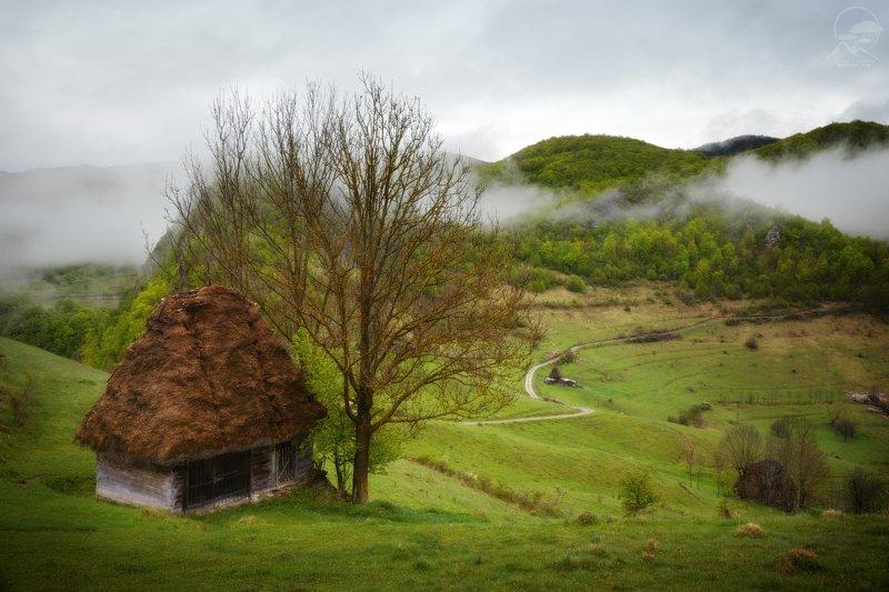 пейзаж, природа, дом, моравия, румыния Apuseni фото превью