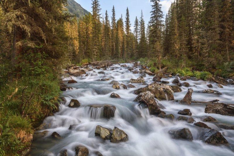 Бурные воды реки Мульта фото превью