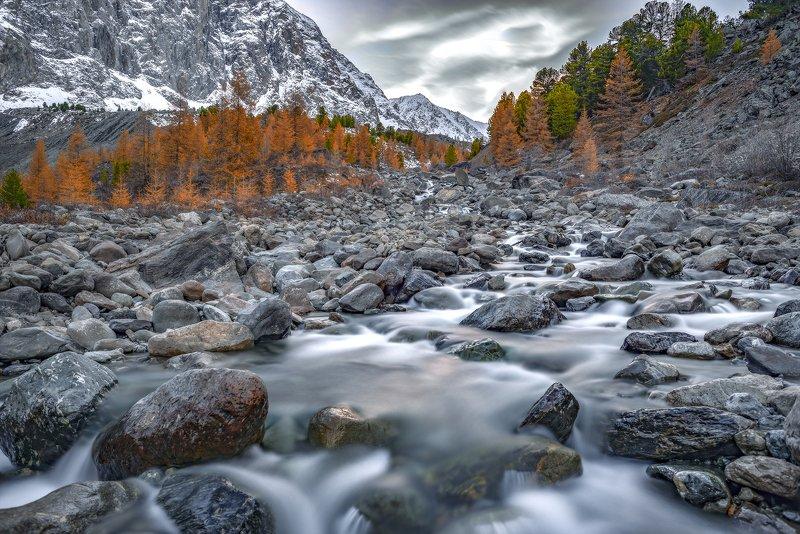 осень, горный алтай, актру, караташ В долине Актру.Фото сделаны с разницей в несколько часов.photo preview