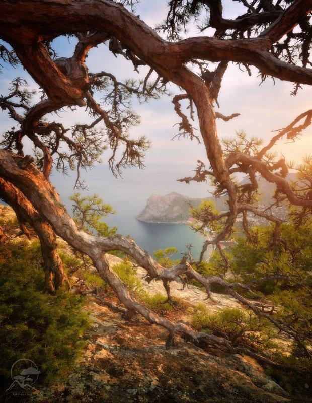 пейзаж, природа, море, горы, крым, новый свет Новосветские коряжки фото превью