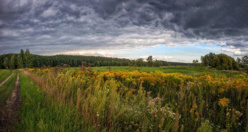лето, поле, лес, Последний месяц летаphoto preview