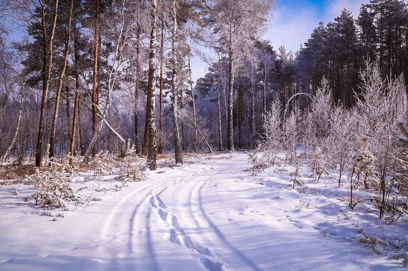 Дорога в сказку. фото превью