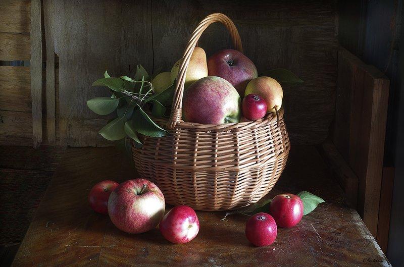 натюрморт,яблоки,лукошко,вера павлухина, Яблочныйphoto preview