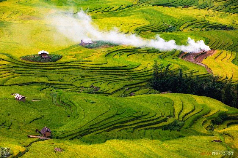 quanphoto, landscape, rice, terraces, highland, plateau, valley, farmland, agriculture, golden, harvest, culture, vietnam Highlands Rice Terracesphoto preview
